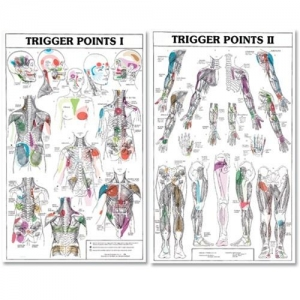 Two Part Trigger Point Chart Set - Click for more info